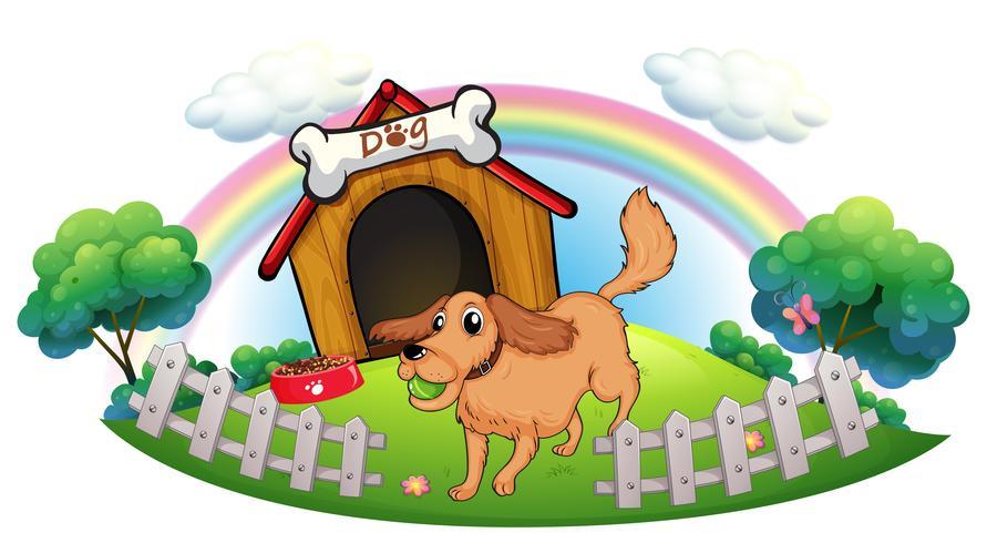 En hund och en regnbåge vektor
