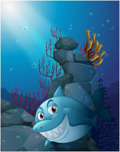 Ein lächelnder Hai unter dem Meer in der Nähe der Felsen vektor