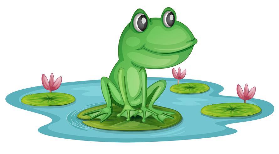 Ein Teich mit einem Frosch vektor