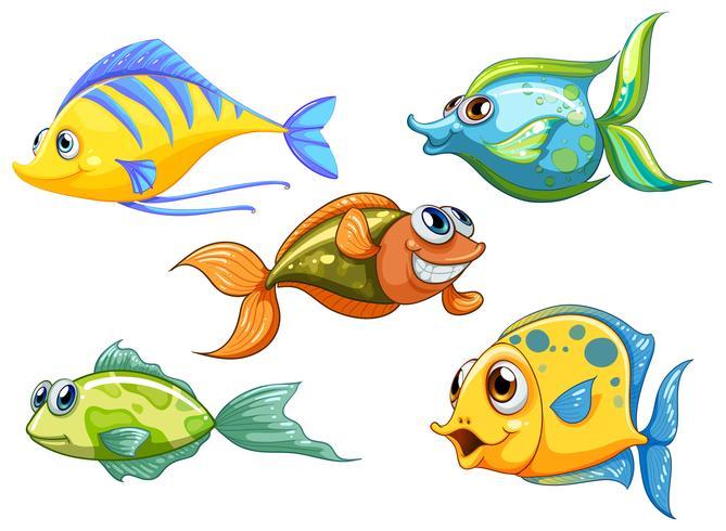 Fünf bunte Fische vektor