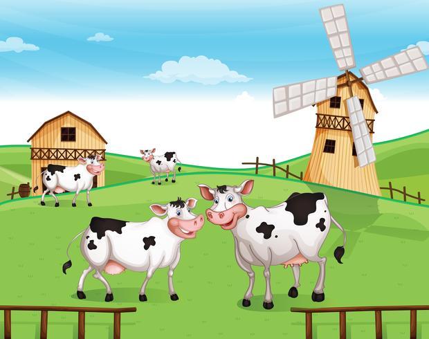 Kor på kullen med en väderkvarn vektor