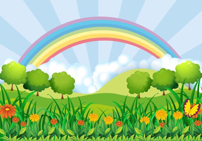 Das Feld und der Regenbogen vektor