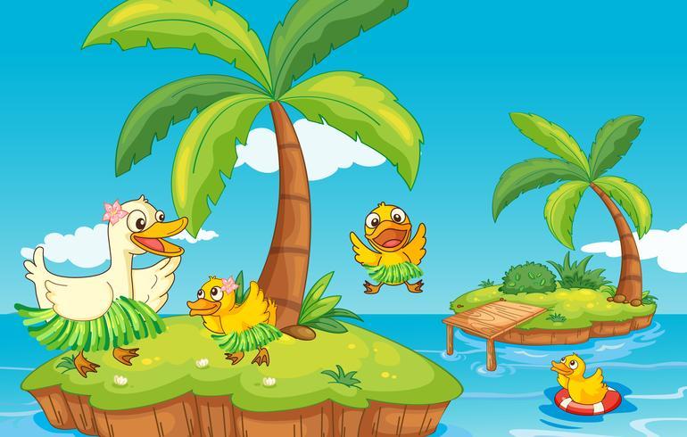 Ente und Entenküken auf der Insel vektor