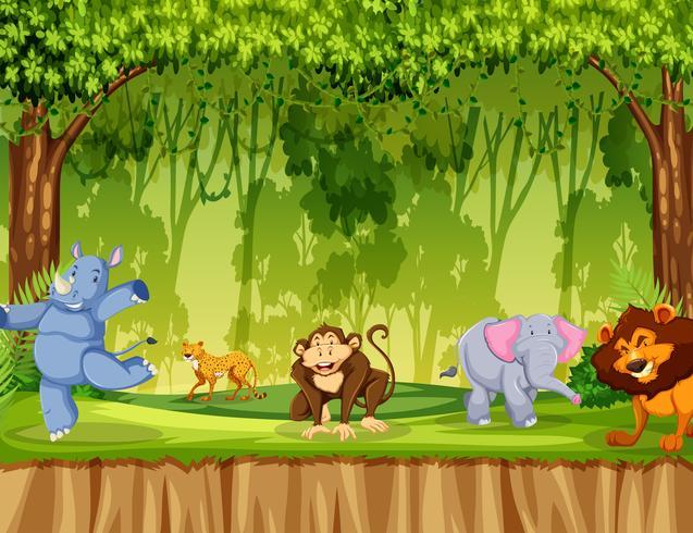 Vilt djur i skogen vektor