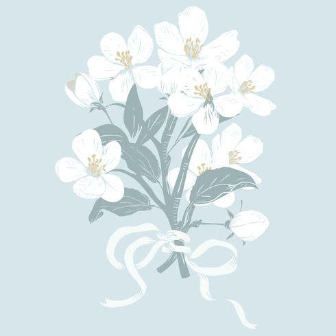 Blommande träd. Handgjorda botaniska vita blommar grenar bukett på blå bakgrund. Vektor illustration