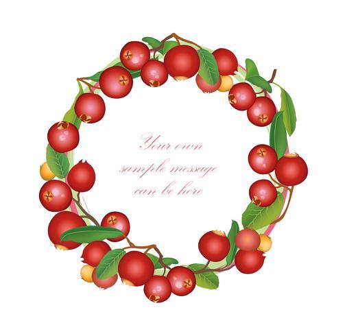 Tranbär sommarram. Berry bakgrund. Blomstrande naturmönster vektor