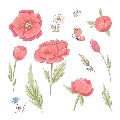 Sats av röda vallmo och tusenskönor. Handritning. Vektor illustration