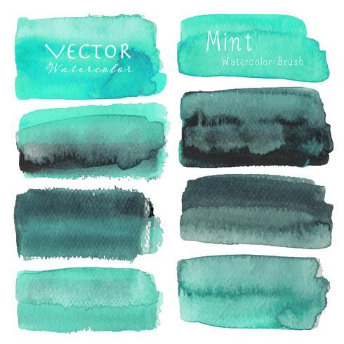 Set med mint akvarell på vit bakgrund, Borstslag akvarell, Vektor illustration.