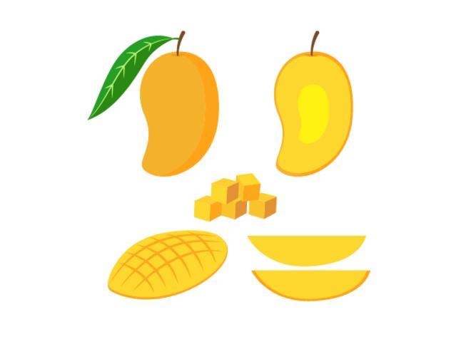 Vector Illustration der frischen Mango des Satzes, die auf weißem Hintergrund lokalisiert wird