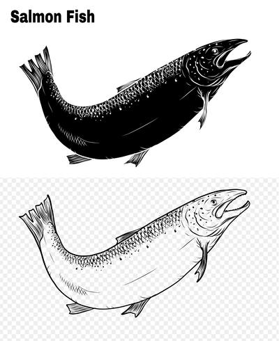 Fiskvektor med handritning. vektor
