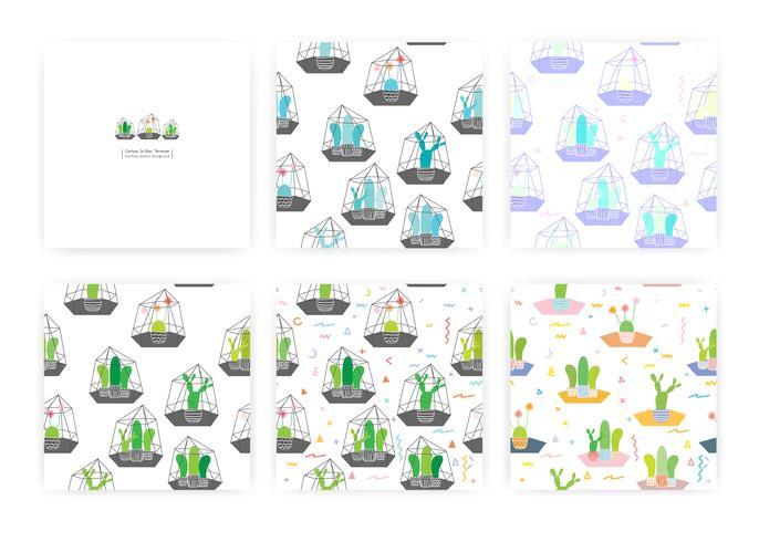 Satz des nahtlosen Musters mit Kakteen in den Glasterrarien. Hintergrund-Illustrationen für Geschenkverpackungsdesign. vektor