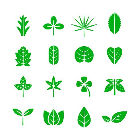 Blatt-Symbol. Natur- und Umweltkonzept. Vektor-illustration vektor