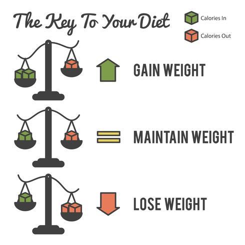 Der Schlüssel zu Ihrer Ernährung vektor
