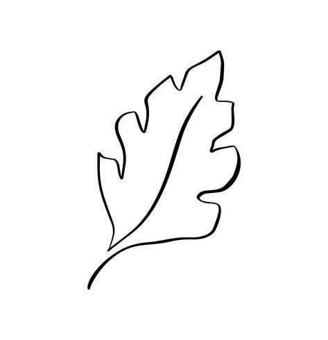 Vector das stilisierte Schattenbild des Frühlingsbaumblattes lokalisiert auf weißem Hintergrund. Eco-Zeichen, Naturkennzeichnung. Dekoratives Element für medizinische, ökologische Marken