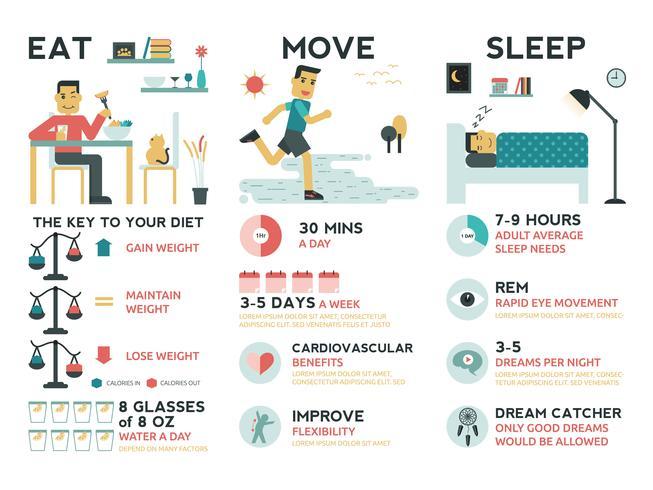 essen bewegen schlafen vektor