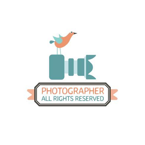 Fotografi märken och etiketter i vintage stil vektor