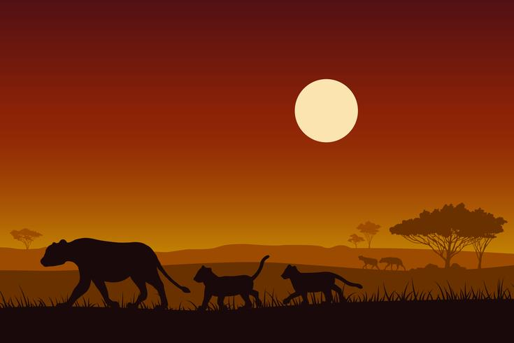 Afrika djurliv. Silhouette kvinnliga lejon och Baby lejon. vektor