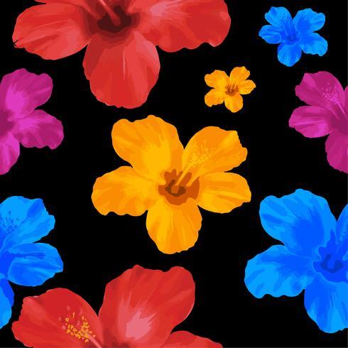 Gul, blå och röd Hibiscus blommor, blommigt sömlöst mönster. Vektor illustration på svart bakgrund.