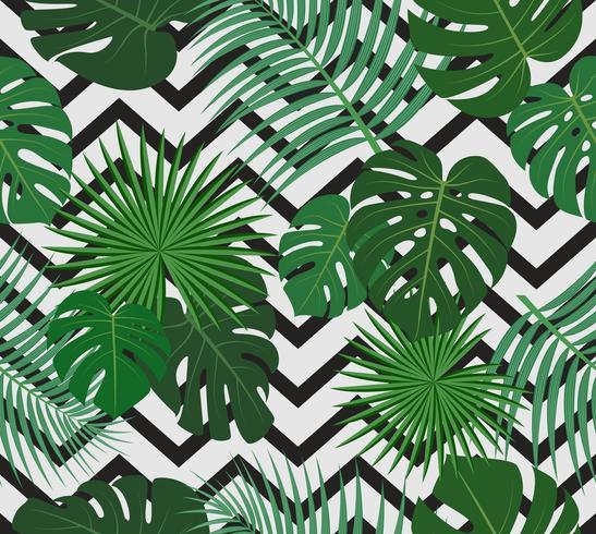 Nahtloses Muster von tropischen Palmblättern des exotischen Dschungels auf Schwarzweiss-Zickzackhintergrund - Vector Illustration