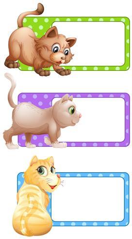 Quadratische Etiketten mit niedlichen Katzen vektor