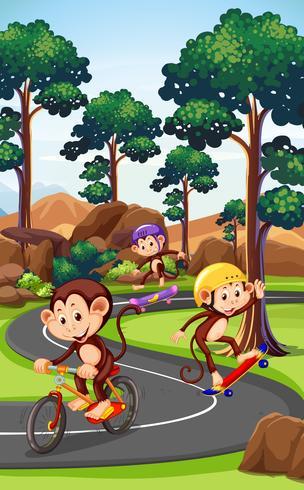 Affe, der Extremsport spielt vektor