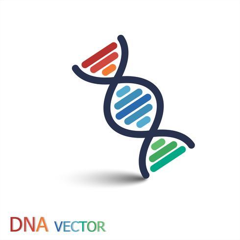 DNA (deoxiribonukleinsyra) symbol (dubbelsträng DNA) vektor