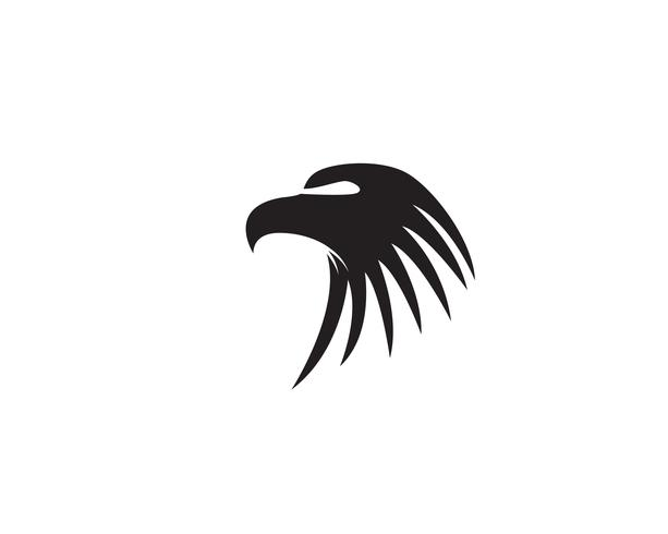 Adlerhauptvogellogo und Symbolvektor vektor