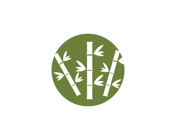 Bambu logotyp Mall vektorikonen vektor