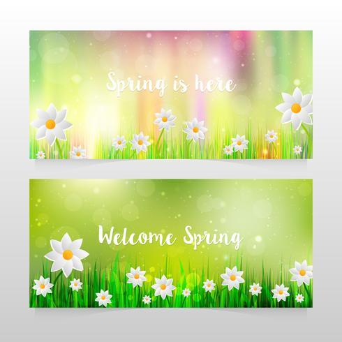 Vårbanners med gräs och vita blommor vektor
