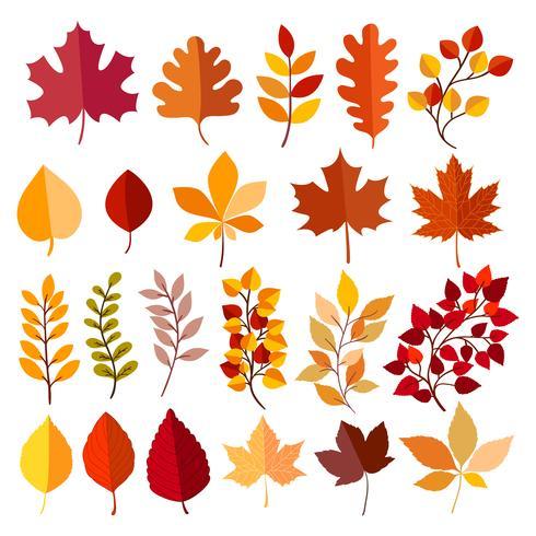 Höstens elementuppsamling vektor