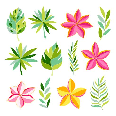 Tropische Sammlung mit exotischen Blumen und Blättern. vektor