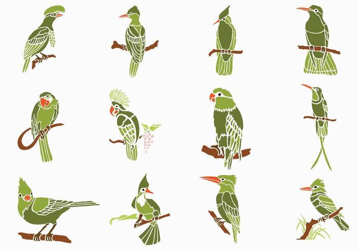 Grüne Vögel Vector Pack