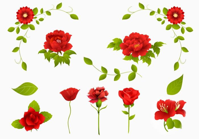 Red Rose, Carnation och Flower Vector Pack