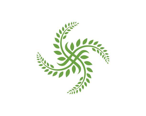 blad ekologi naturelement vektor ikon