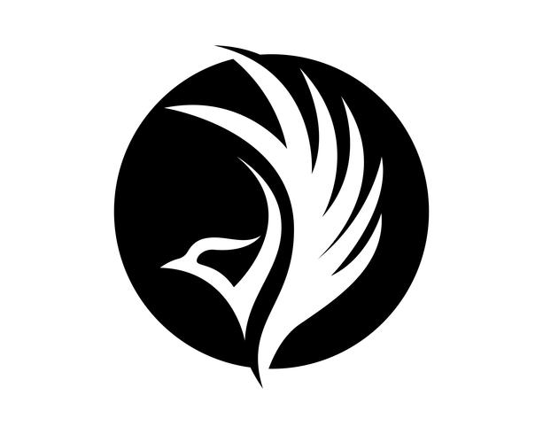 Vingar fågel underteckna abstrakt mall ikoner app vektor