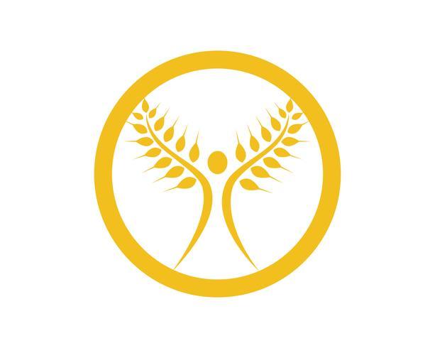 Jordbruk vete Logo Mall vektor ikon design