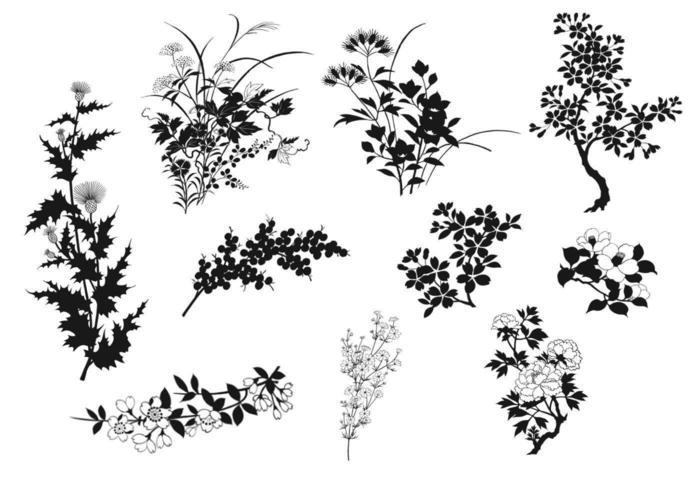 Naturlig växt Vector Silhouette Elements Pack