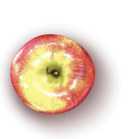 Vektor illustration av realistiskt rött äpple