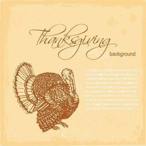 Thanksgiving Turkiet Vektor Bakgrund