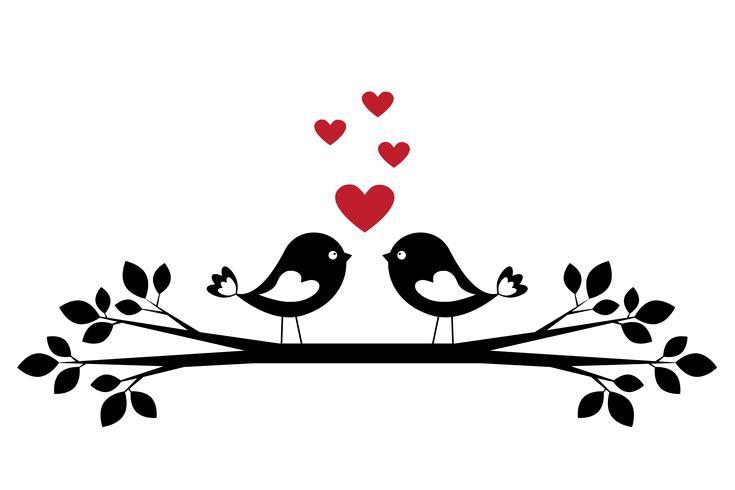 Silhuett söta fåglar i kärlek vektor