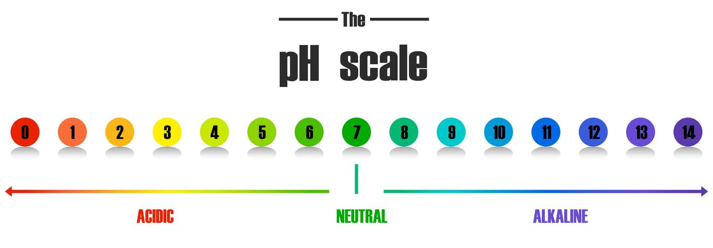 Vetenskaplig pH-skala mall vektor