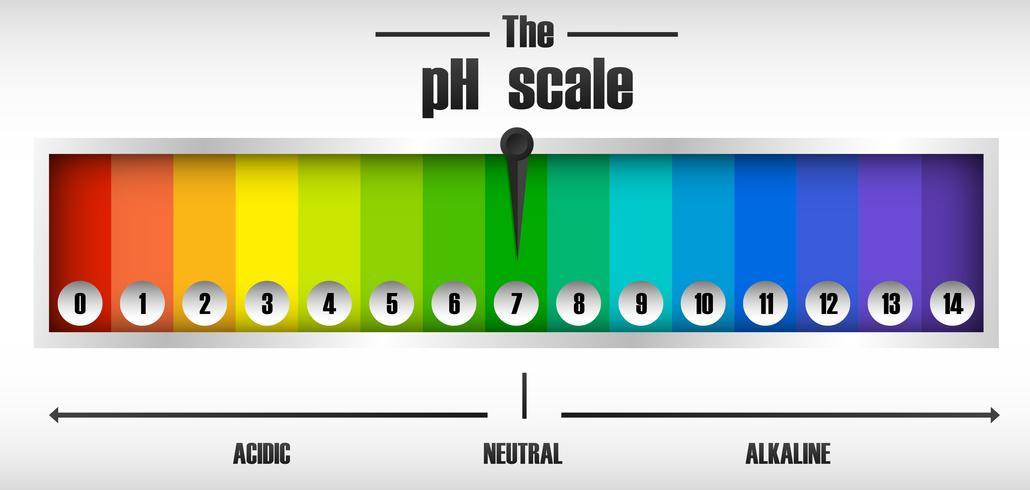 Das pH-Skalendiagramm vektor