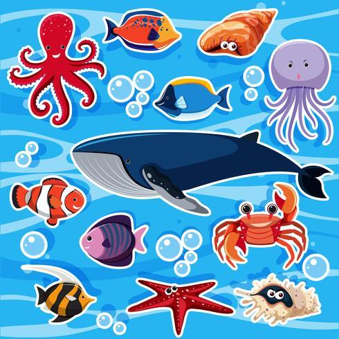 Klistermärke mall med många havsdjur vektor