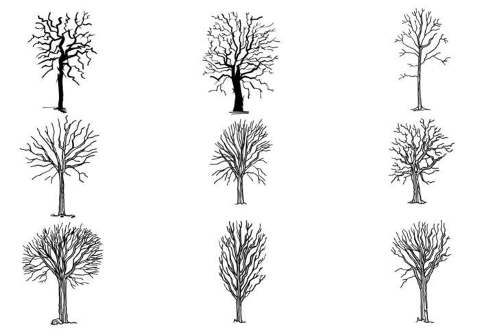 handritad död träd vektor pack