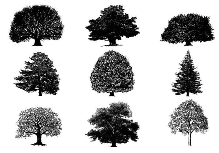 siluett träd vektor pack