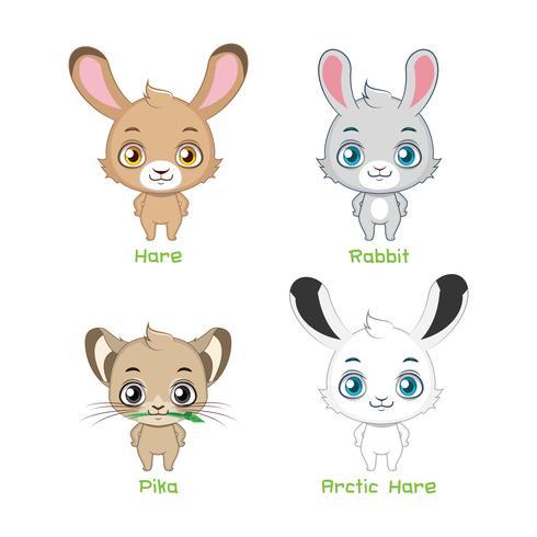 Set av kaninarter vektor