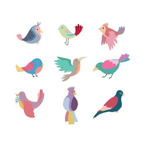 Samling av vackra färgstarka stiliserade fåglar vektor