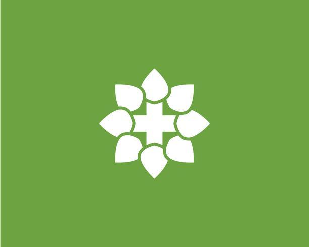 grünes Blatt Logo Ökologie Naturelement vektor