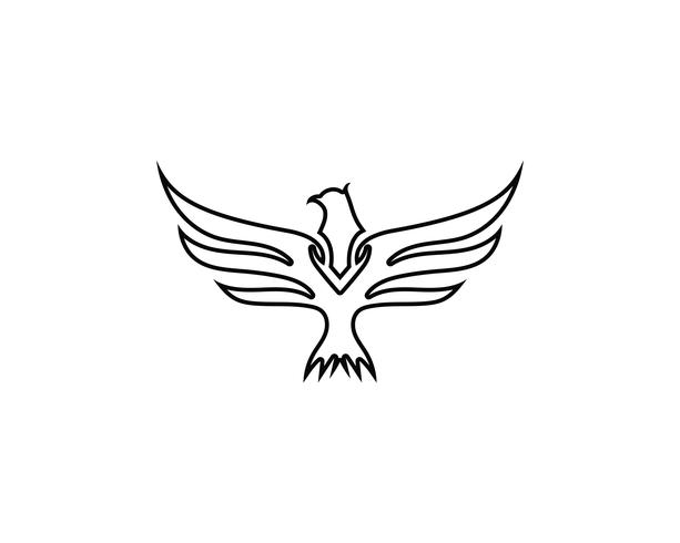 Wing Falcon Bird Logo vektor