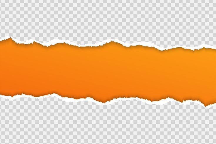 Zerreißen Sie Papier oder Rand auf einem transparenten Hintergrund. vektor